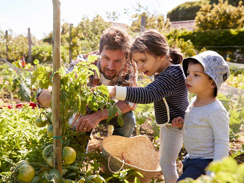 How Gardening Teaches Kids To Grow Scholastic Parents