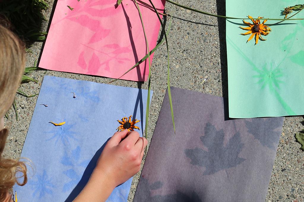 DIY Art: Make Construction Paper Sun Prints