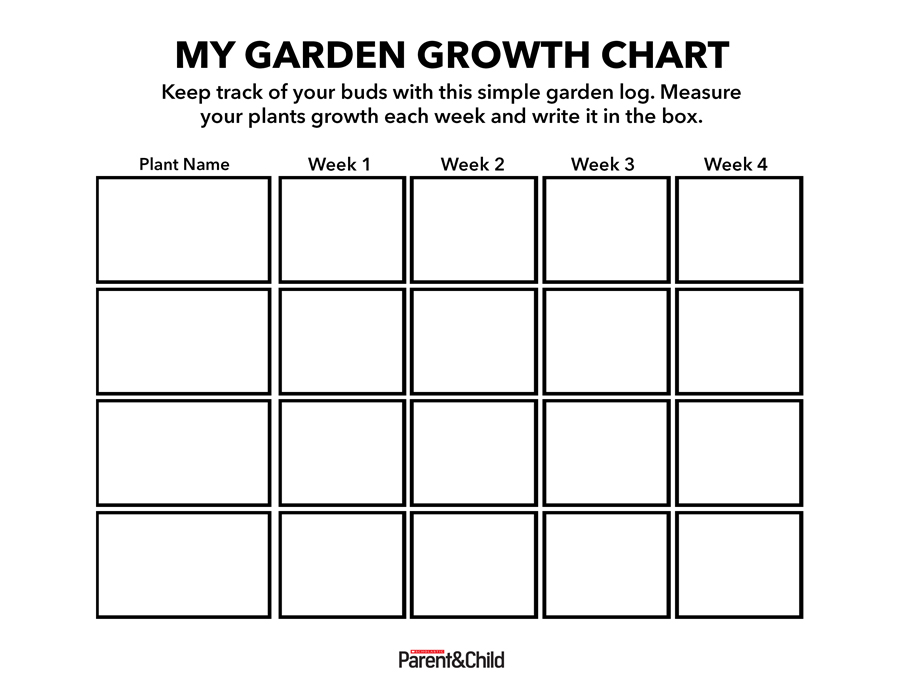 photo regarding Printable Growth Charts identified as Enhancement Chart printable Scholastic Dad and mom