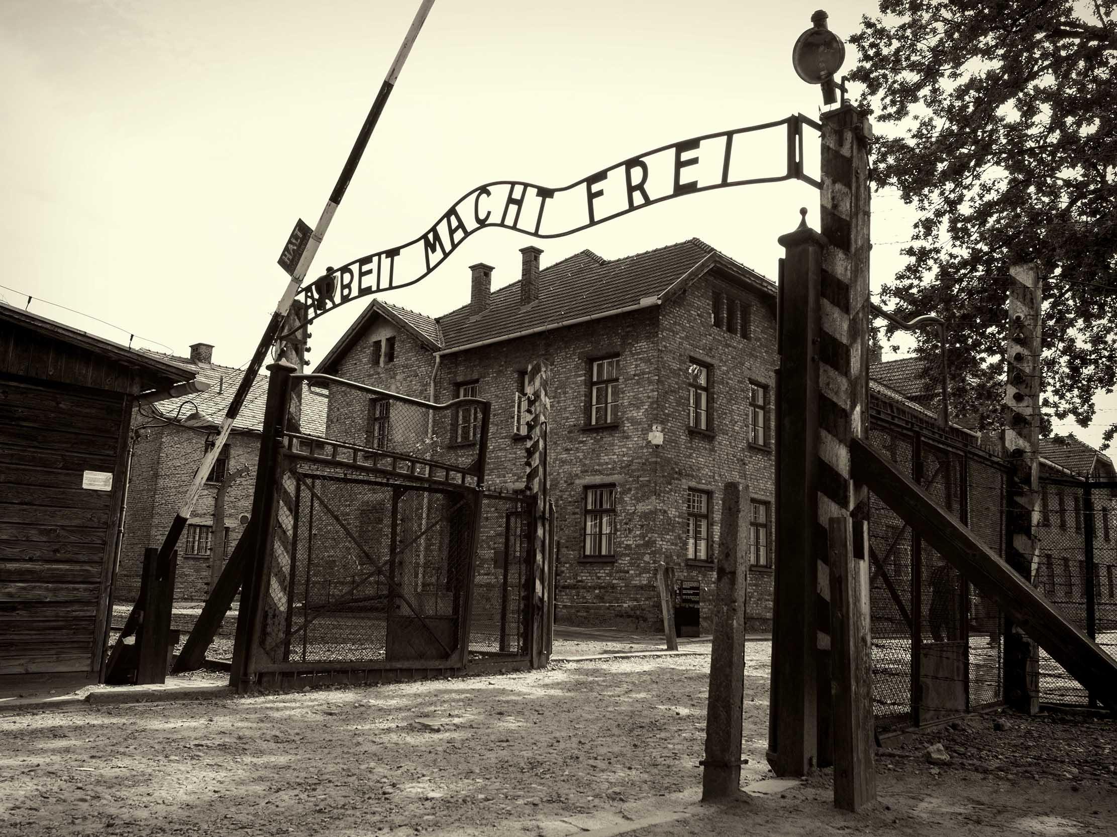 Essay holocaust topic