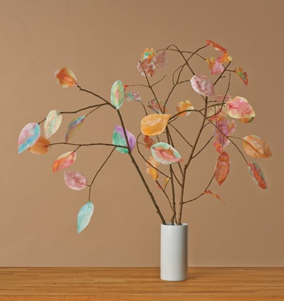 Craft Ideas Using Tree Branches