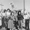 Protestors at Ruby Bridges First Day of School