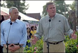 colin powell and jeb bush