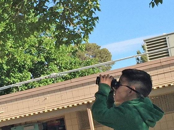 A student looks at birds in a tree through binoculars for Earth Day