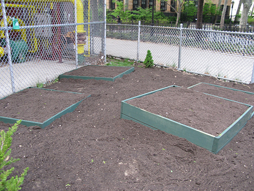 Garden Set-Up Year 2