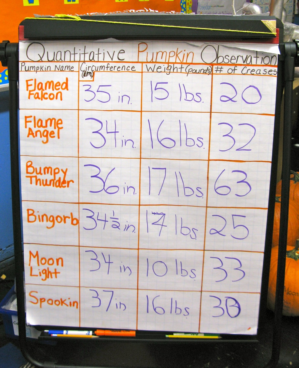 The Pumpkin Project: Math, Science, and Fun! | Scholastic