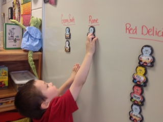 Kaedyn voting for the Rome apple as his favorite