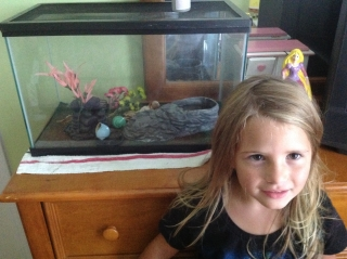 Rylee with her pet Hermit Crabs