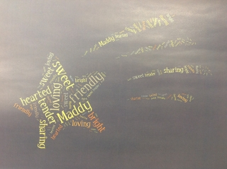 Maddy's Tagxedo Shooting Star