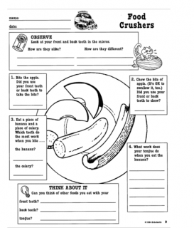 Food Crushers Sheet