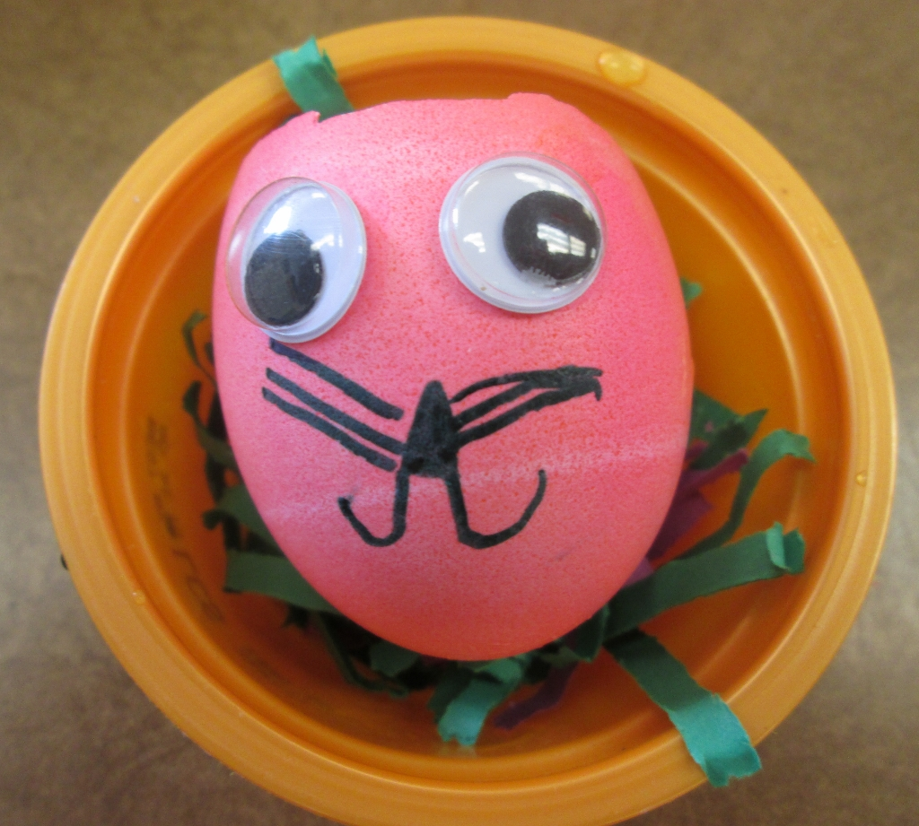 how to draw on eggshell solidworks