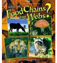 What are Food Chains and Webs