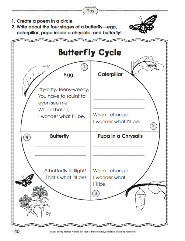 Worksheets Butterfly Life Cycle Worksheet 10 ready to go resources for teaching life cycles scholastic 7 printables