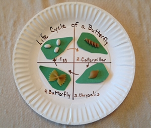 butterfly plate craft
