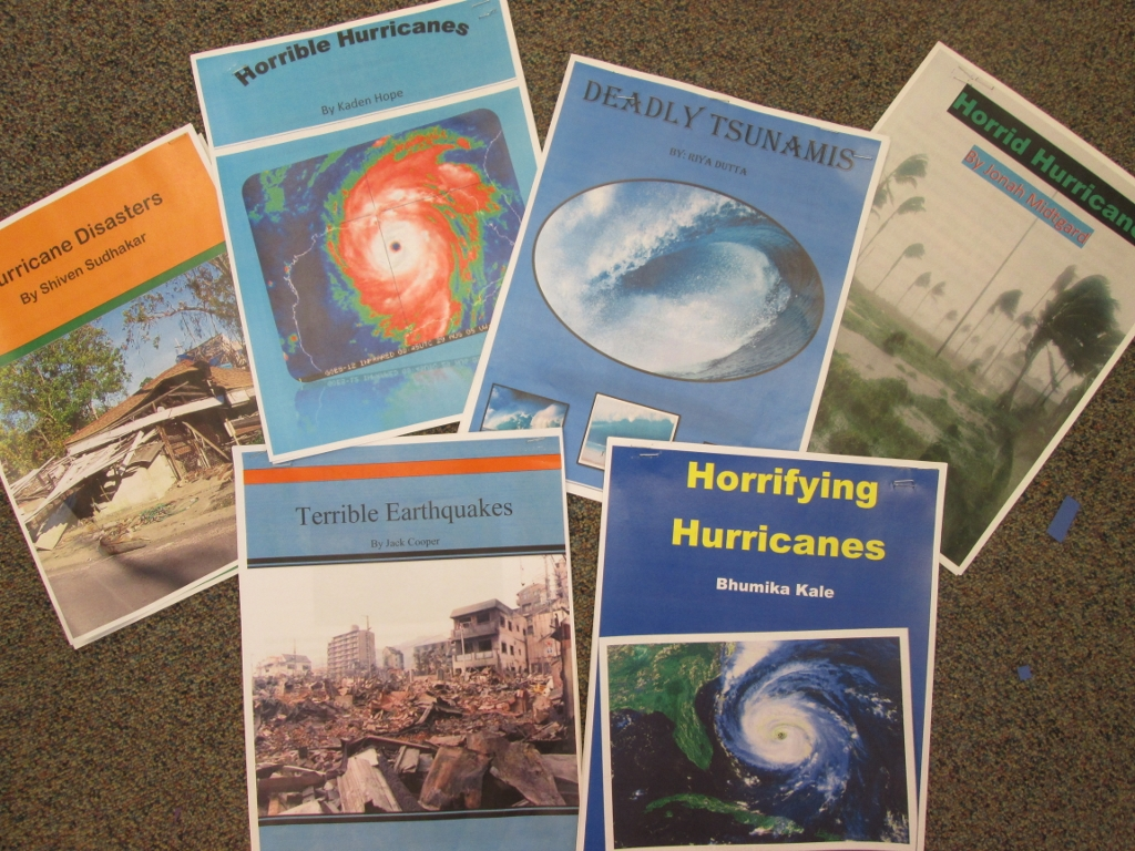 disaster research reports