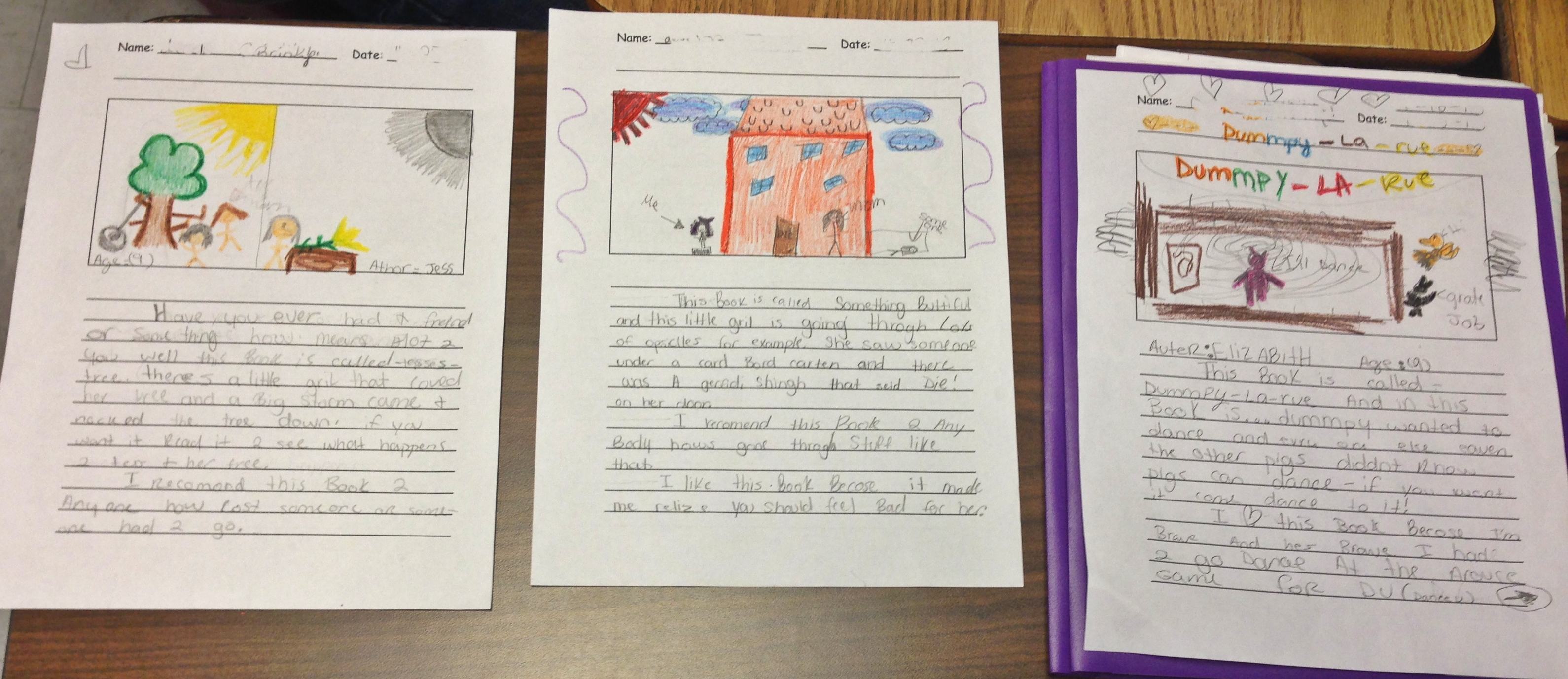 how to write a book report for third graders