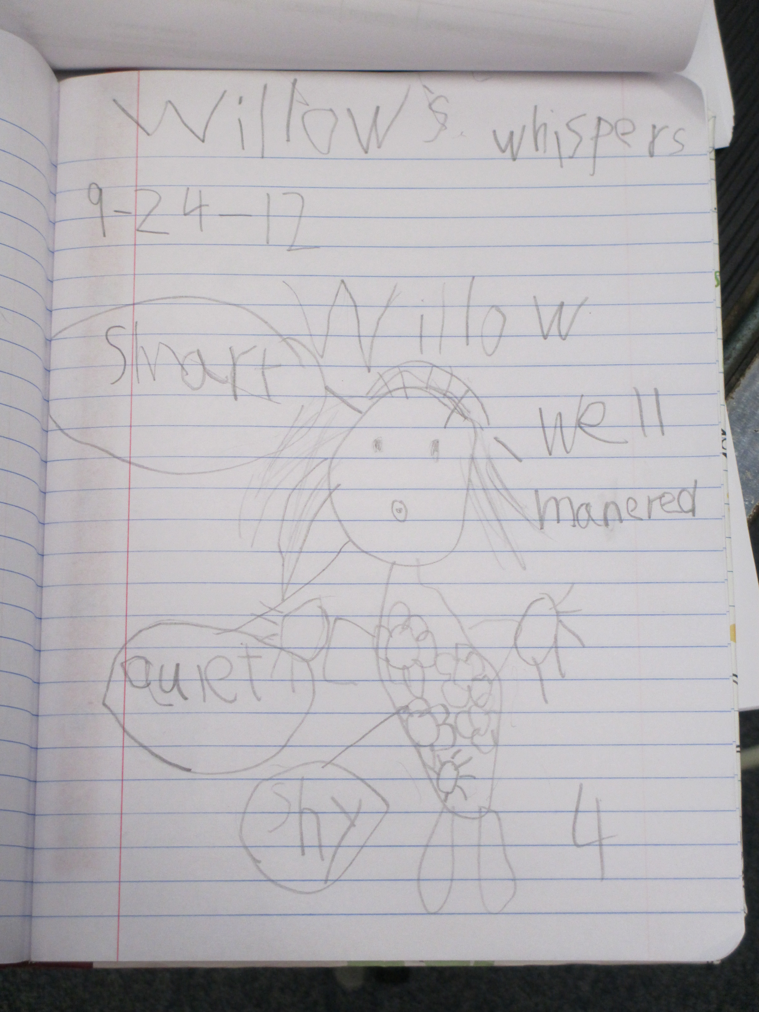 Student Character Map of Willow