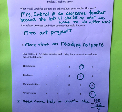 Prepare Conduct and Reflect on Student Surveys – Student Survey Template