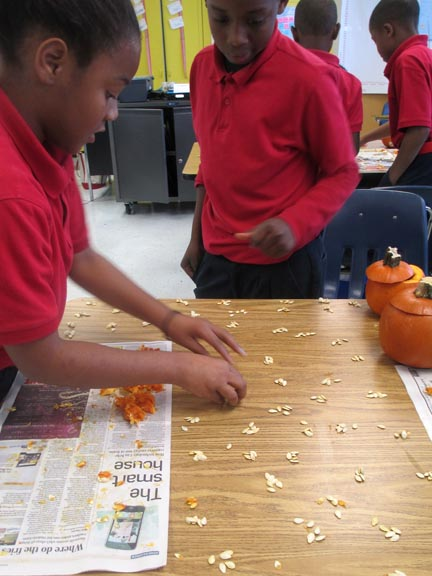 Investigating and Counting Seeds