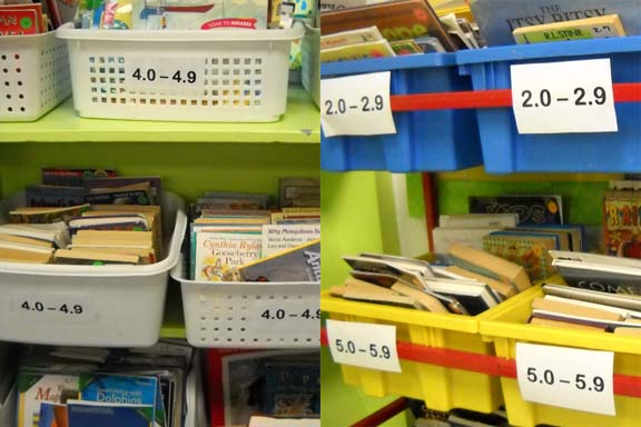 Labeled Book Baskets