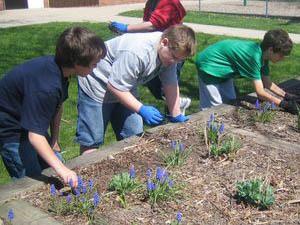 10 Ways To Go Green At School Scholastic