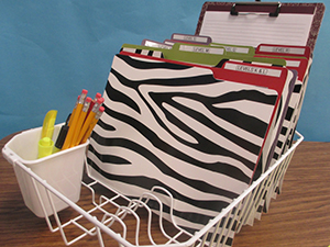 Guided Reading Organizer