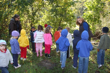 teaching science with trees scholastic
