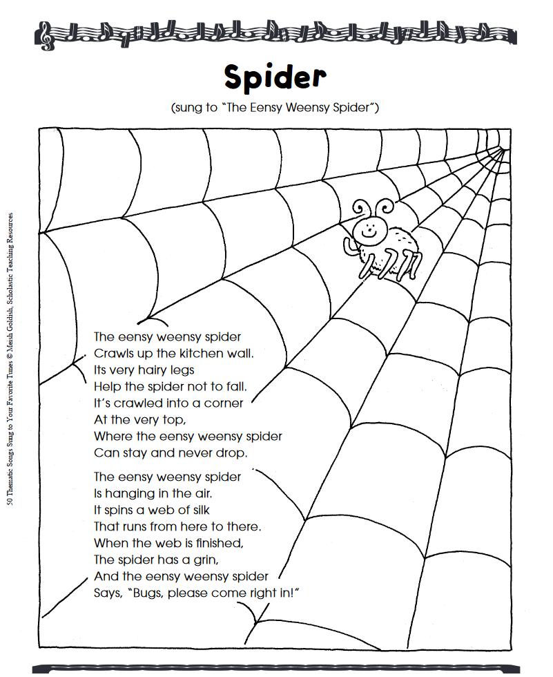 Spider Activities Your Class Will Love Scholastic