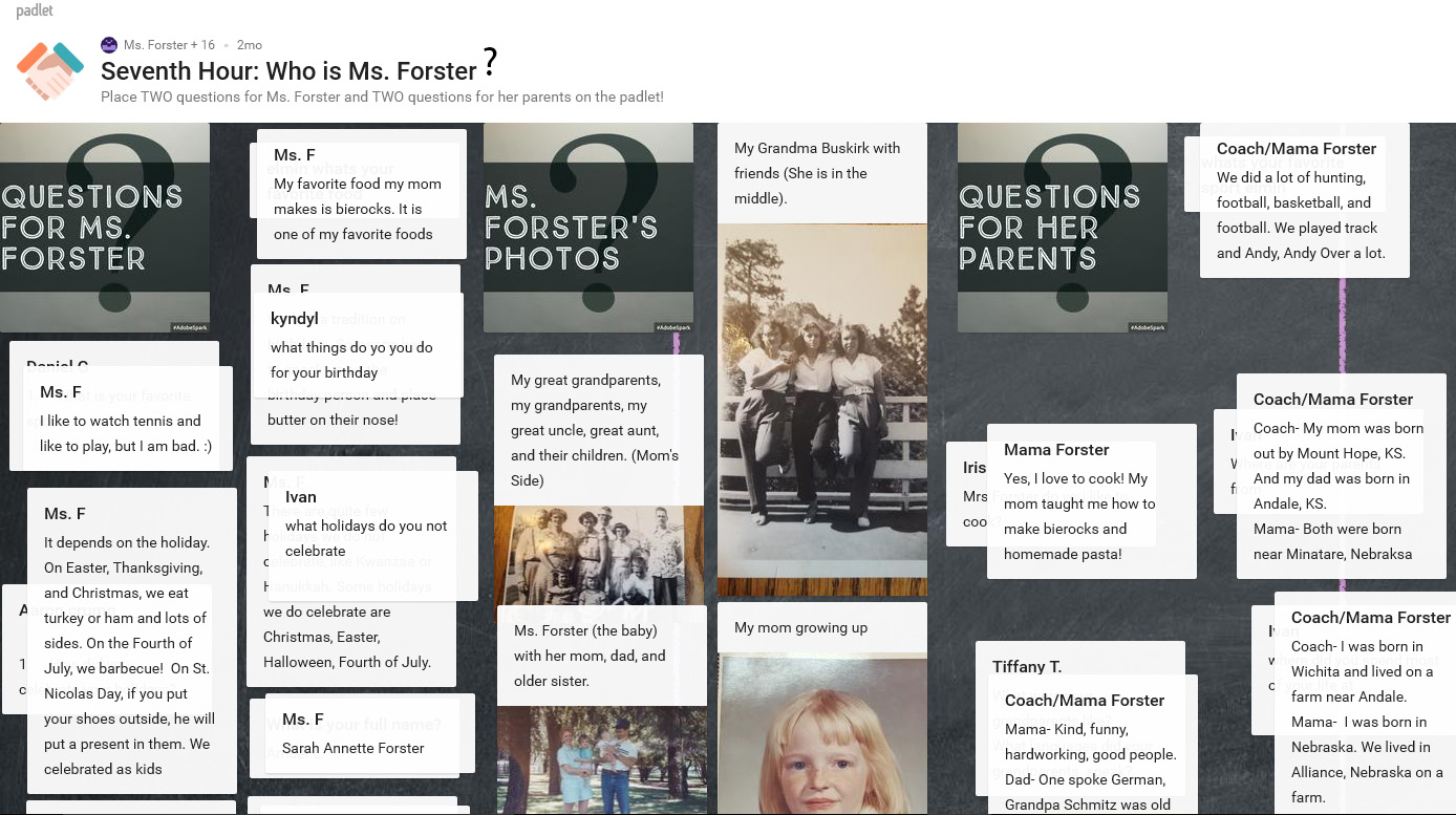 paddlet questions