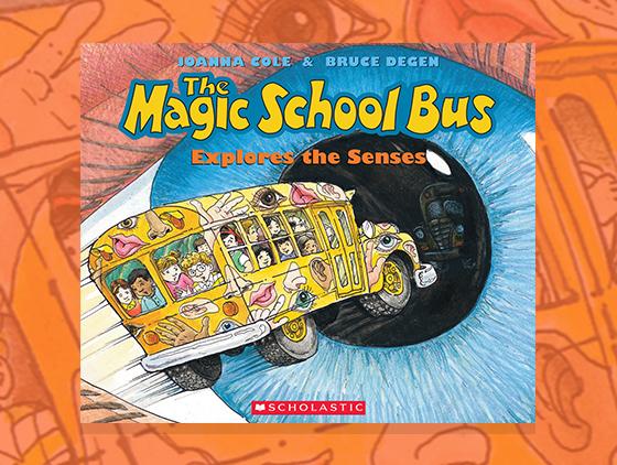 The Magic School Bus Explores The Senses Teaching Guide Scholastic
