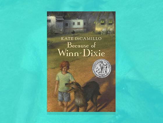 Because Of Winn Dixie Lesson Plan Scholastic