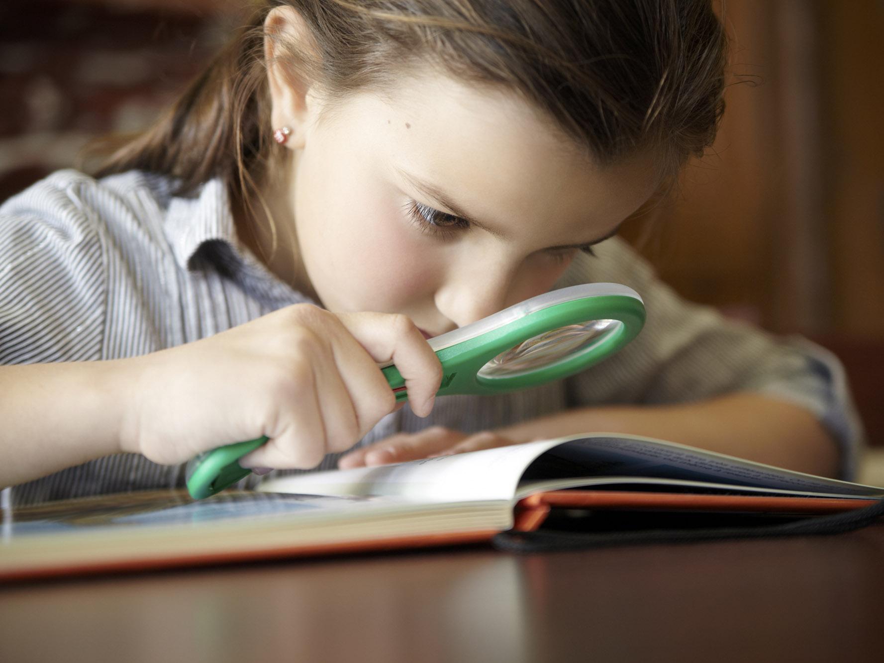Reading Detectives Lesson Plan | Scholastic