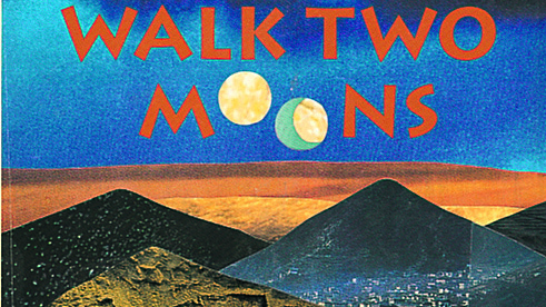 book report walk two moons Creech wrote walk two moons in the first person, revealing the thoughts and feelings of the protagonist, salamanca tree hiddle (sal), a young girl searching for.