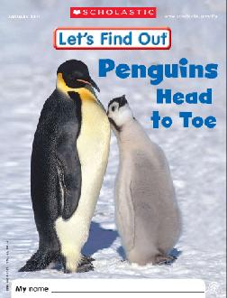 Penguins Head To Toe A Lets Find Out Issue