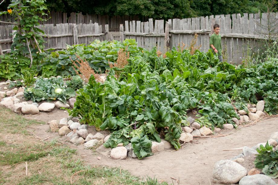 Plimoth Plantation Virtual Tour Scholastic
